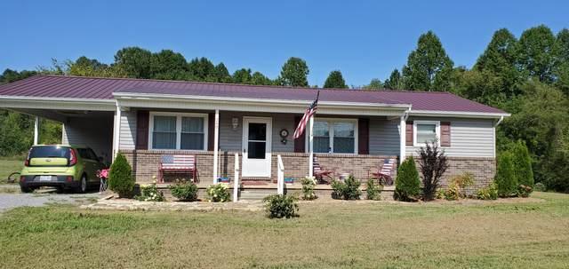 248 Holston Terrace Drive, Rogersville, TN 37857 (#1129368) :: Venture Real Estate Services, Inc.