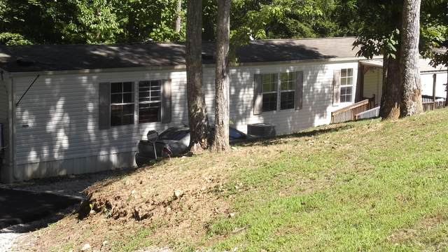 2389 Shady Cove Rd Rd, Caryville, TN 37714 (#1129394) :: The Sands Group