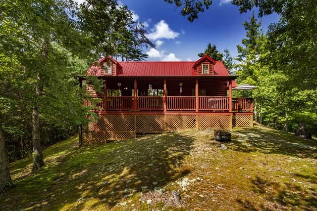 1440 Red Cedar Lane, Sevierville, TN 37876 (#1129527) :: Realty Executives