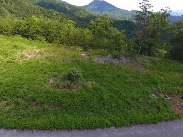 Lot #38 Mountain Ash Way, Sevierville, TN 37876 (#1129597) :: The Terrell Team
