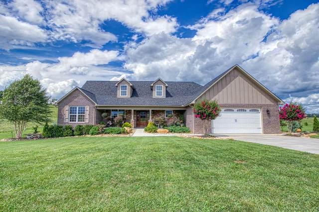 1330 Rippling Waters Circle, Sevierville, TN 37876 (#1129602) :: The Sands Group