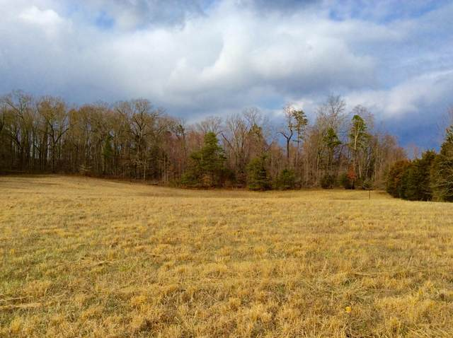 Lot 1 Star Gazing Lane, Knoxville, TN 37938 (#1129616) :: Tennessee Elite Realty