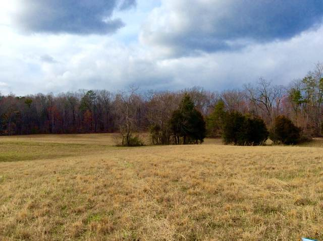 Lot 2 Star Gazing Lane, Knoxville, TN 37938 (#1129617) :: Tennessee Elite Realty