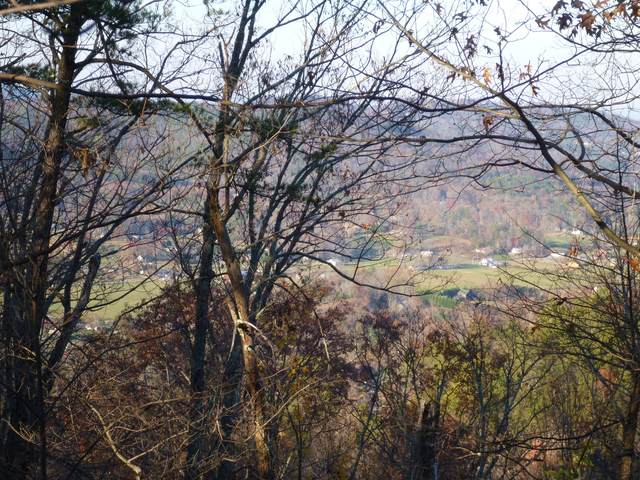 Lot 3 & 4 High Ridge Way, Sevierville, TN 37862 (#1129672) :: The Terrell Team