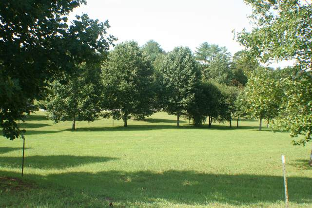 2441 Robin Ridge Drive, Maryville, TN 37801 (#1129738) :: Shannon Foster Boline Group