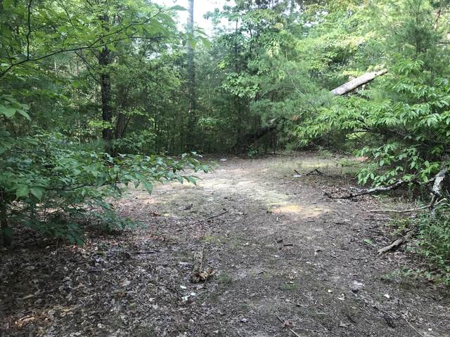 Lot 40 Autumn Lane, Pigeon Forge, TN 37863 (#1130001) :: Billy Houston Group