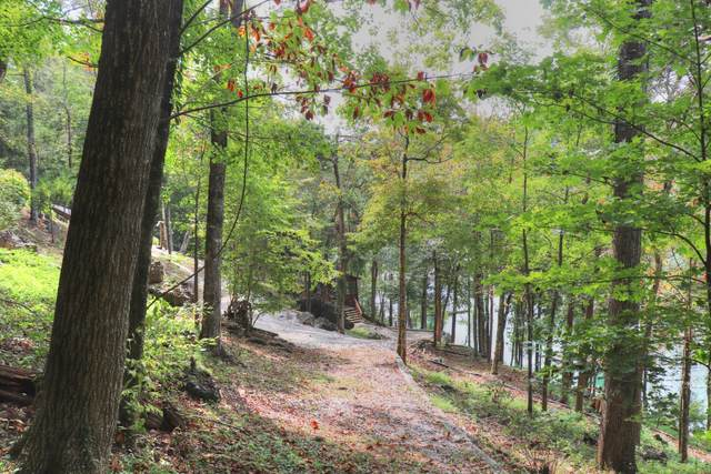 Lot 67 Fox Lake Lane, LaFollette, TN 37766 (#1130016) :: Catrina Foster Group