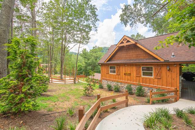 1163 Pine Mountain Rd, Pigeon Forge, TN 37863 (#1130085) :: Billy Houston Group