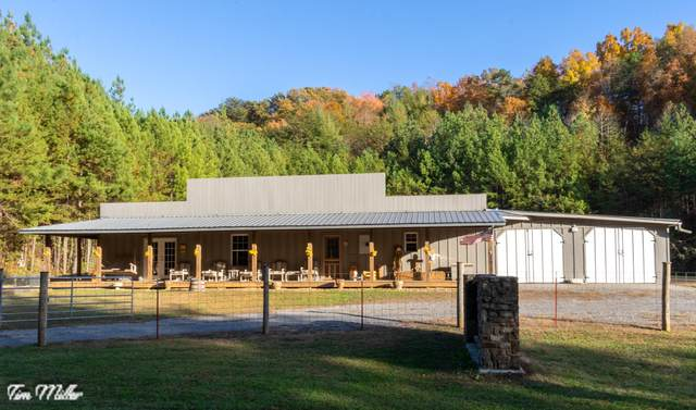 1685 Reliance Rd, Tellico Plains, TN 37385 (#1130093) :: Realty Executives Associates Main Street