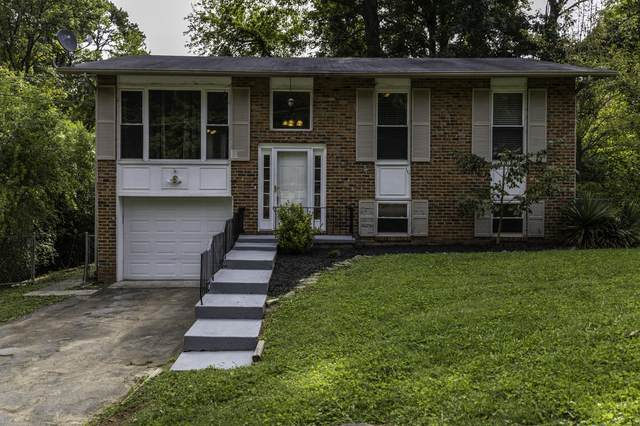 6516 NW Ellesmere Drive, Knoxville, TN 37921 (#1130147) :: Realty Executives