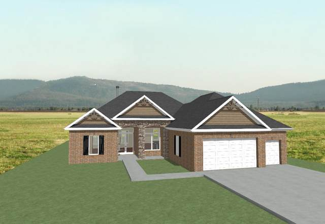 1163 Kahite Trail Tr, Vonore, TN 37885 (#1130150) :: Realty Executives