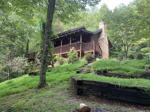 4175 Lumber Jack Way, Sevierville, TN 37876 (#1130264) :: Billy Houston Group