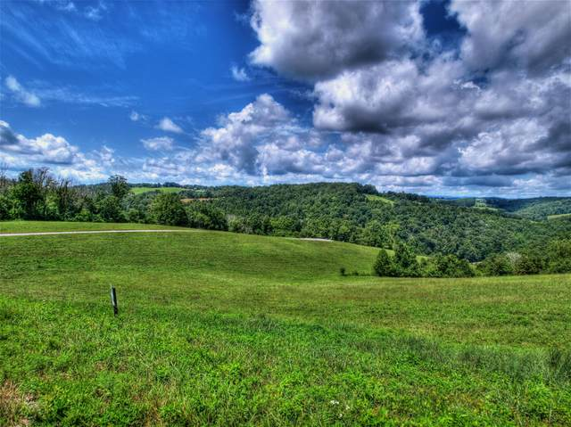 Lot 230 Jade Lane, New Tazewell, TN 37825 (#1130290) :: Catrina Foster Group