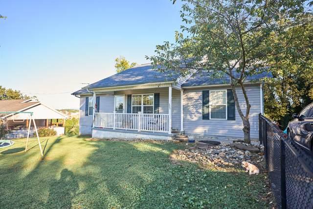 320 Landau Drive, Maryville, TN 37801 (#1130329) :: Catrina Foster Group