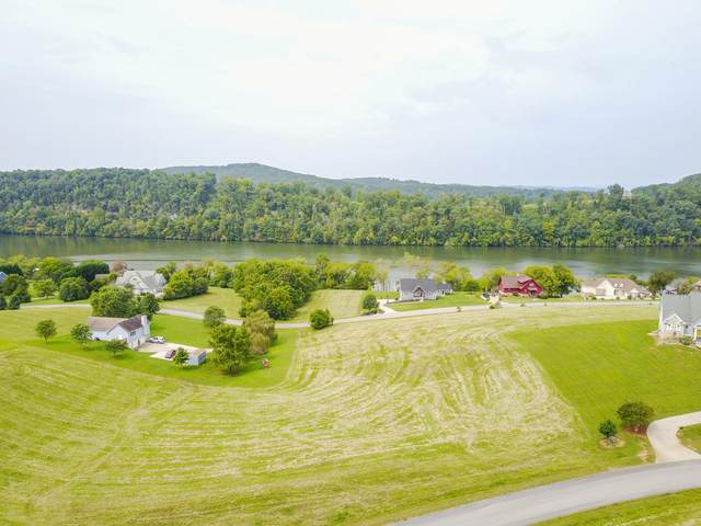 Marble Bluff Drive, Kingston, TN 37763 (#1130462) :: Billy Houston Group