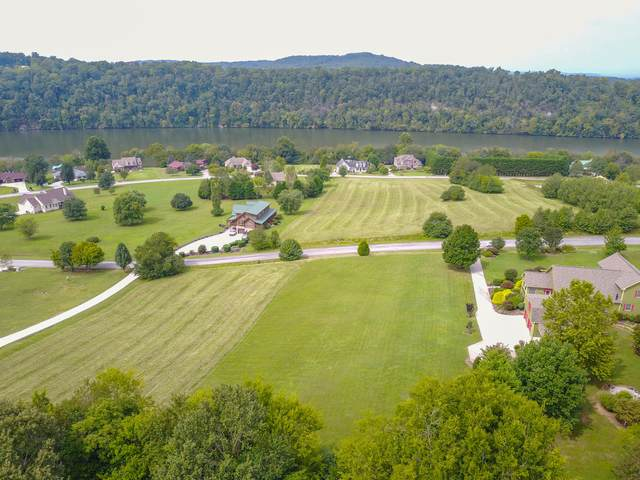 Marble View Drive, Kingston, TN 37763 (#1130469) :: Billy Houston Group