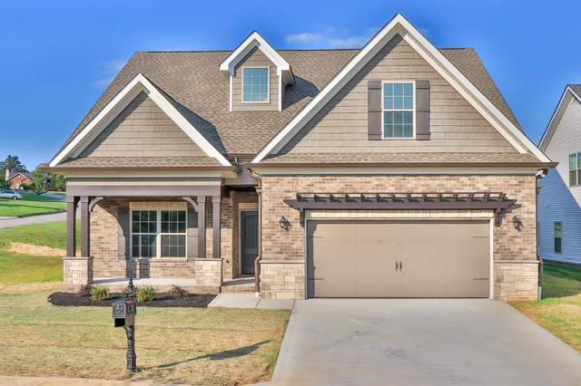 255 Chalmette Way, Lenoir City, TN 37772 (#1130542) :: Realty Executives