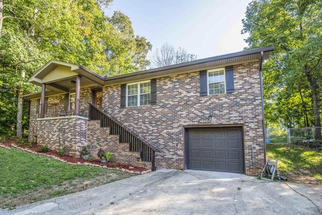 5904 Wilkerson Rd, Knoxville, TN 37921 (#1130663) :: Realty Executives