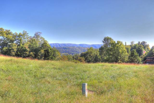 Lot 460 Smokey Quartz Blvd, New Tazewell, TN 37825 (#1130695) :: Catrina Foster Group