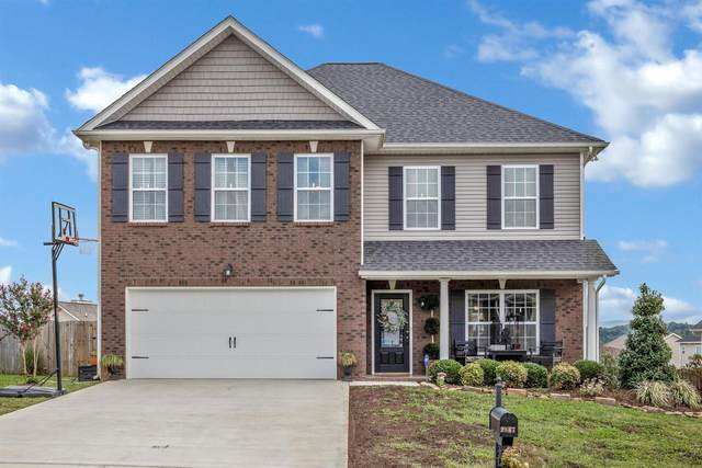 2847 Southwinds Circle, Sevierville, TN 37876 (#1130708) :: Catrina Foster Group