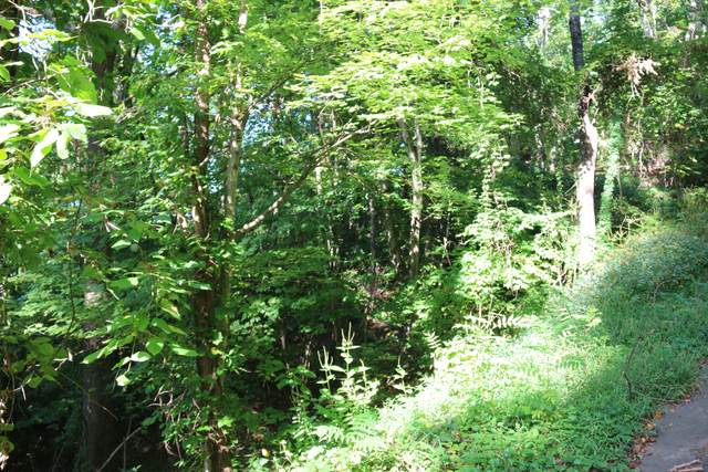 Lot 0832 Orchard Drive, Sevierville, TN 37876 (#1130728) :: Venture Real Estate Services, Inc.