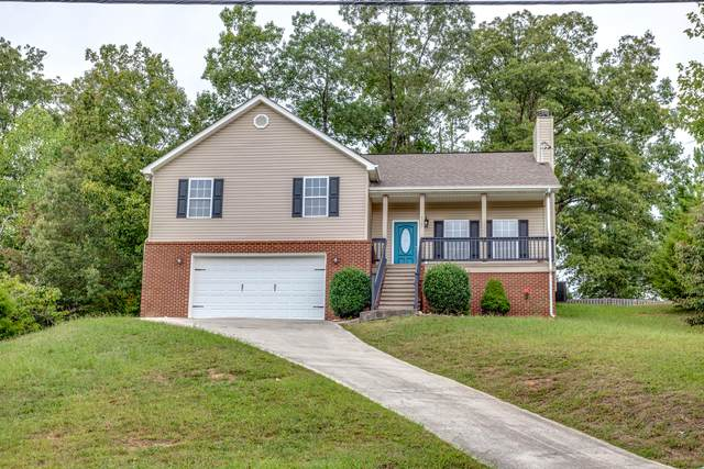 4305 Foothills Drive, Knoxville, TN 37938 (#1130771) :: The Cook Team