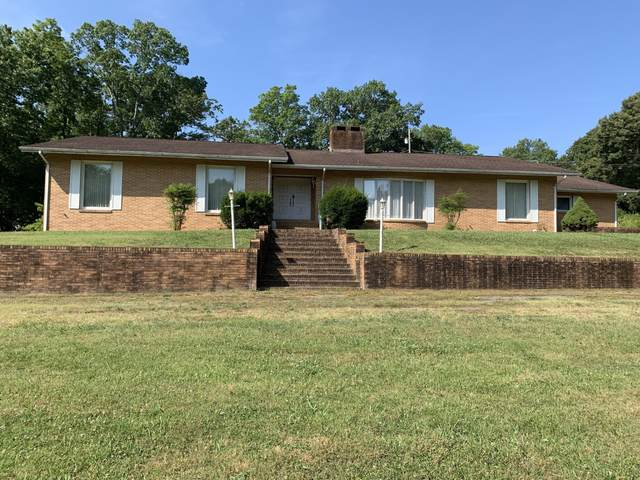 716 Crestview Drive, Rockwood, TN 37854 (#1130787) :: Catrina Foster Group