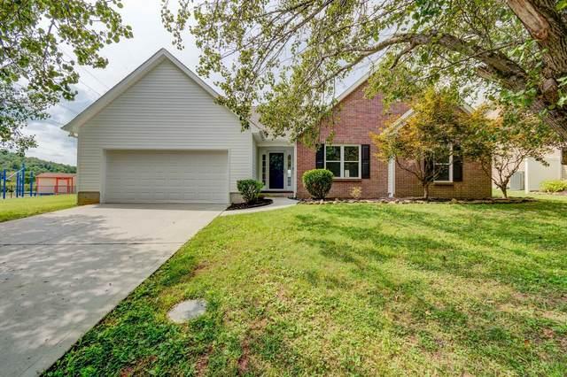 6441 Sterchi Village Blvd, Knoxville, TN 37918 (#1130796) :: Catrina Foster Group