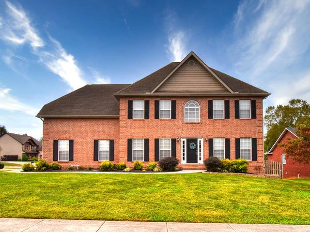 149 Glenshire Lane, Lenoir City, TN 37771 (#1130858) :: Catrina Foster Group