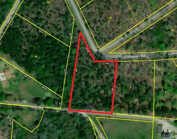 Loch Haven - Lot 1 Drive, Rockwood, TN 37854 (#1130867) :: Cindy Kraus Group | Realty Executives Associates