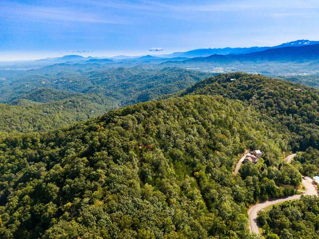 Lot 126E And 127E Settlers View Lane, Sevierville, TN 37862 (#1130883) :: The Terrell Team