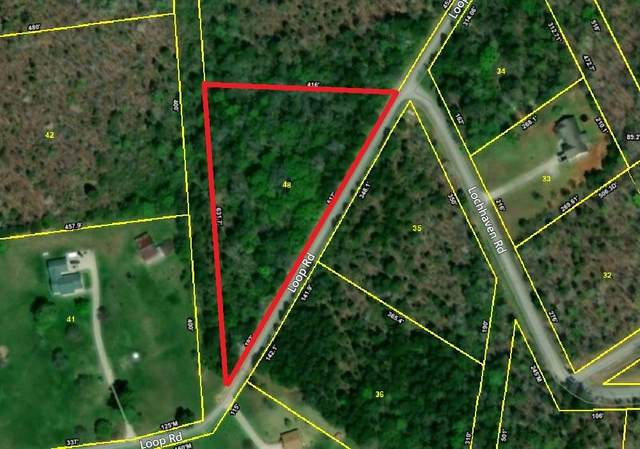 Loch Haven - Lot 48 Drive, Rockwood, TN 37854 (#1130919) :: Cindy Kraus Group | Realty Executives Associates