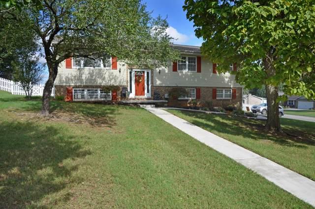 8000 Paradise Drive, Powell, TN 37849 (#1131032) :: Catrina Foster Group