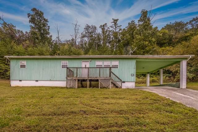183 Long Beard Lane, Tazewell, TN 37879 (#1131044) :: Billy Houston Group