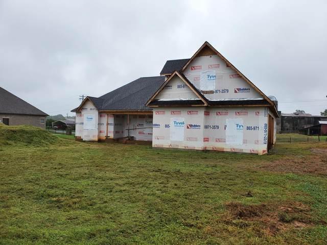 3411 Old Plantation Way, Maryville, TN 37804 (#1131085) :: Catrina Foster Group