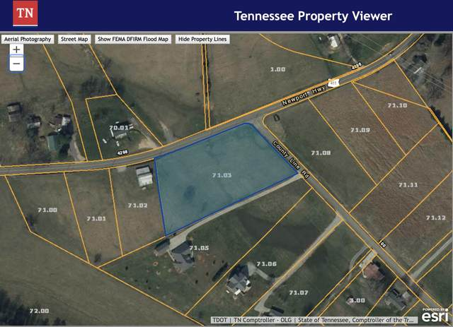 Newport Hwy, Dandridge, TN 37725 (#1131105) :: Shannon Foster Boline Group
