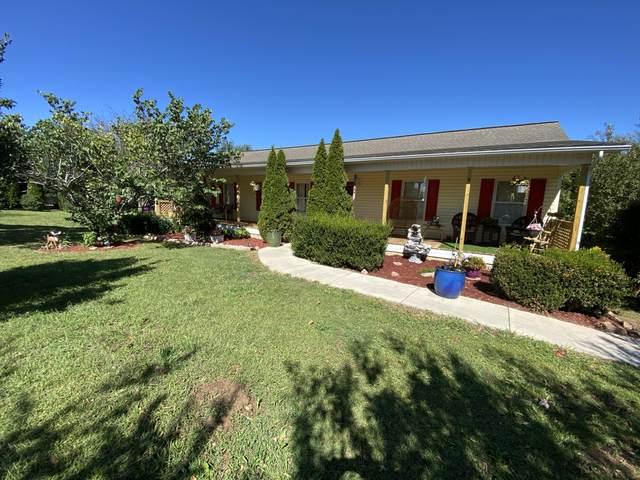 103 Amaryllis Rd, Newport, TN 37821 (#1131130) :: Billy Houston Group