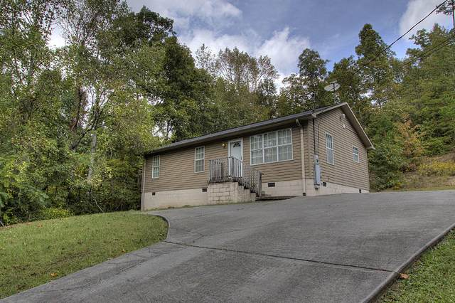 146 Richards Drive, Oliver Springs, TN 37840 (#1131154) :: Realty Executives