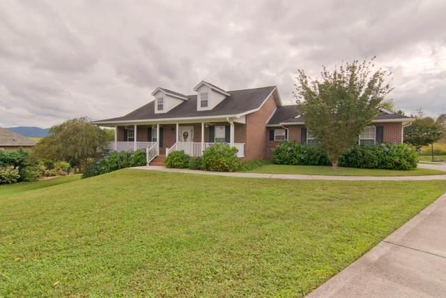 3520 Brandon Lee Drive, Maryville, TN 37804 (#1131180) :: Realty Executives Associates Main Street