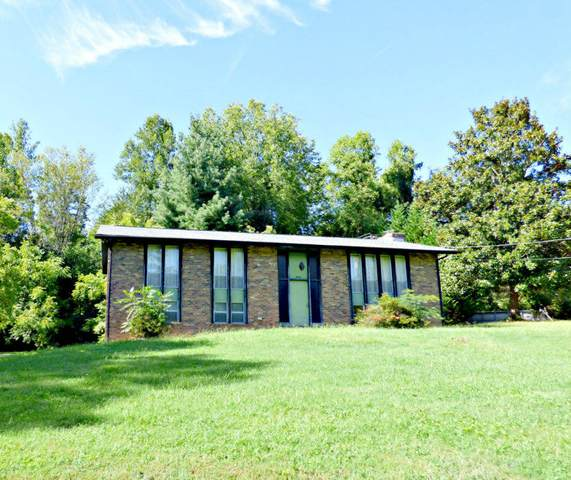 1040 Chris Dale Drive, Seymour, TN 37865 (#1131229) :: Realty Executives Associates Main Street