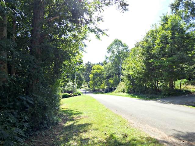 Lot 70 Chris Dale Drive, Seymour, TN 37865 (#1131242) :: Realty Executives Associates Main Street