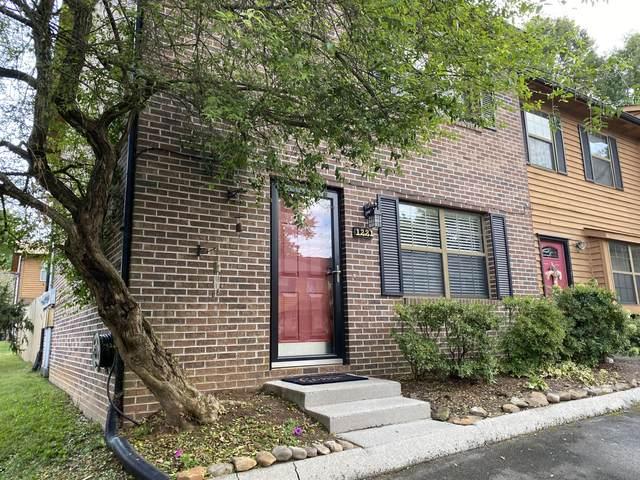 1221 Crest Brook Drive, Knoxville, TN 37923 (#1131285) :: Realty Executives Associates Main Street