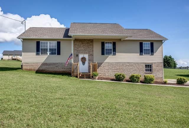 157 Ridgefield Drive, Dandridge, TN 37725 (#1131424) :: Realty Executives Associates Main Street