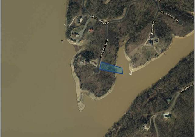 Lot 48 Stone Bridge Drive, Dandridge, TN 37725 (#1131428) :: Billy Houston Group