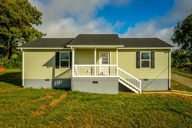 175 Lookout Drive, Rutledge, TN 37861 (#1131436) :: Billy Houston Group