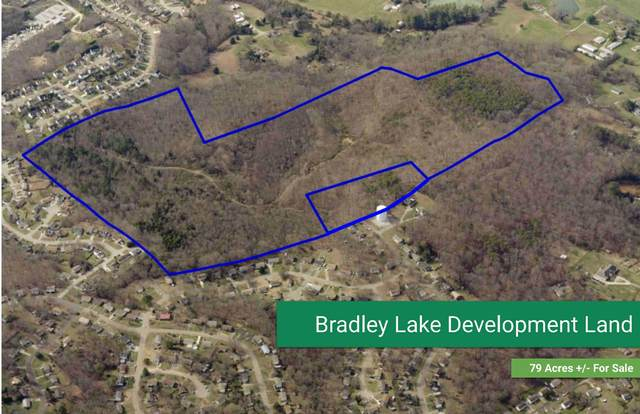 Orabella Rd, Knoxville, TN 37921 (#1131456) :: Billy Houston Group