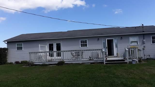458 Sam Duncan Lane, Tazewell, TN 37879 (#1131476) :: Billy Houston Group