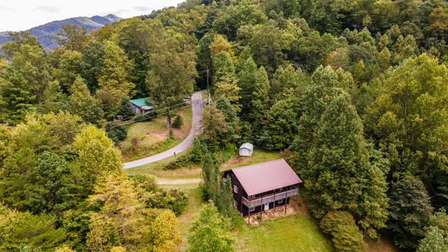 3920 Regal Court, Sevierville, TN 37876 (#1131682) :: Shannon Foster Boline Group