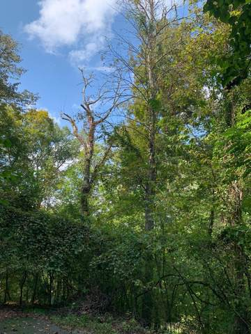 lot 303 Cherry Wood (Off Garfield Ln), Sharps Chapel, TN 37866 (#1131699) :: Shannon Foster Boline Group