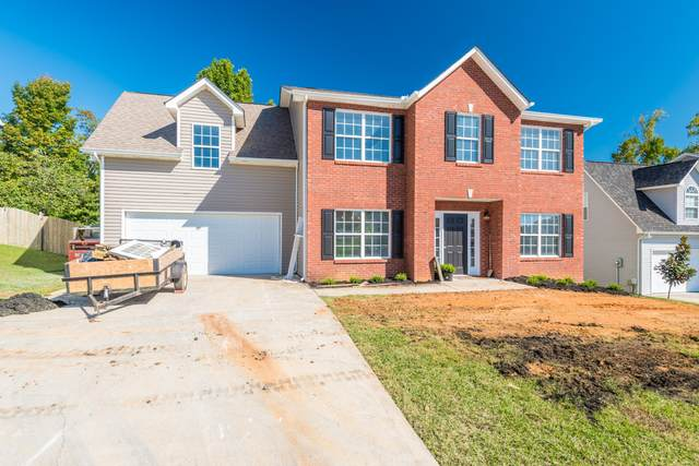 7415 Misty View Lane, Knoxville, TN 37931 (#1131731) :: Shannon Foster Boline Group